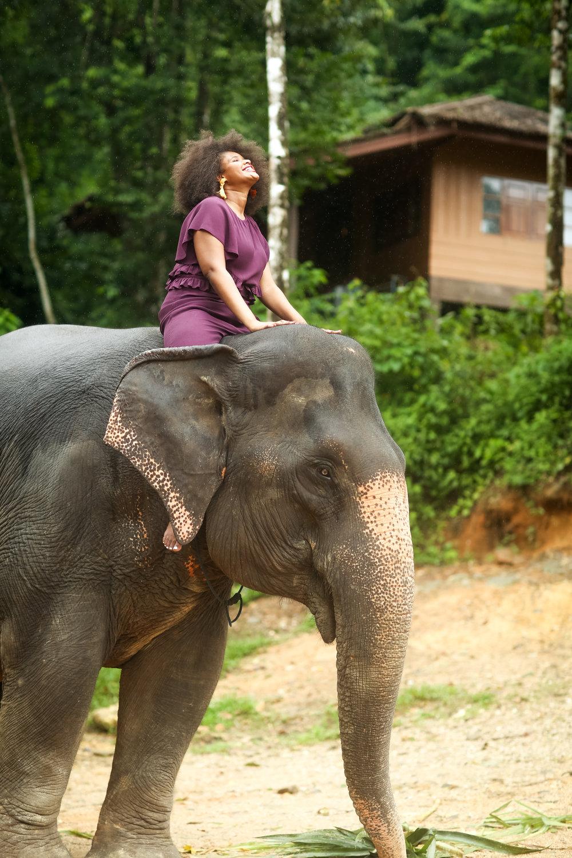 elephant-56.jpg