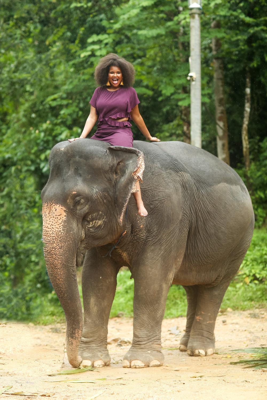 elephant-57.jpg