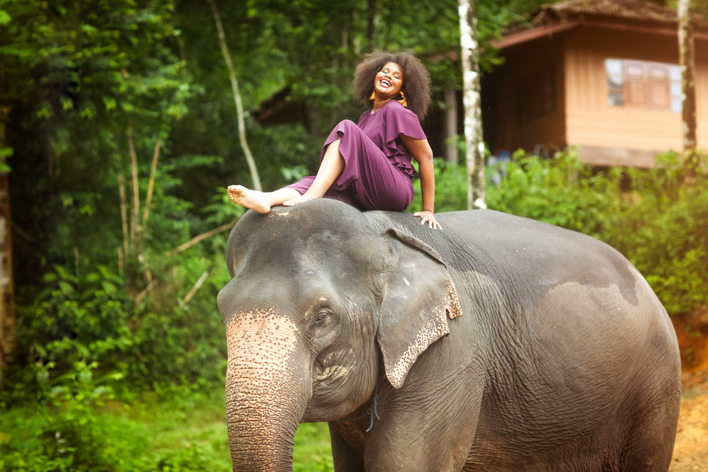 elephant-60.jpg