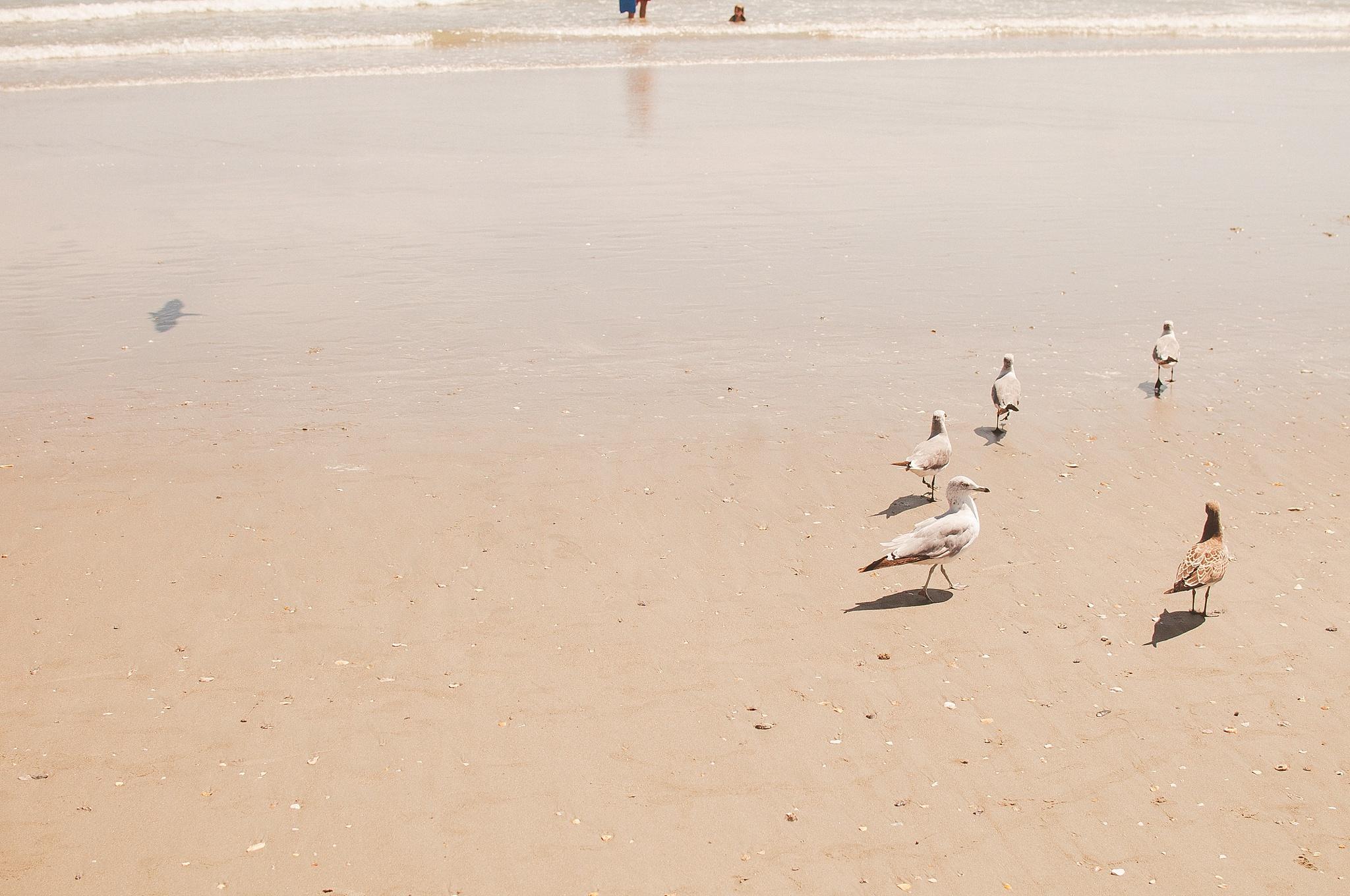 Beach129