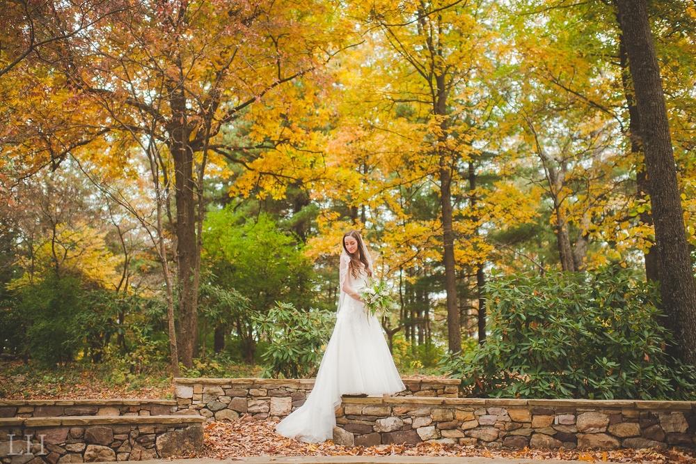 BridalsBlog101.jpg
