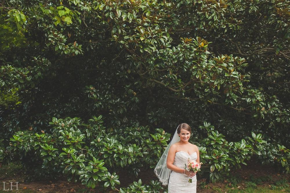BridalsBlog111.jpg