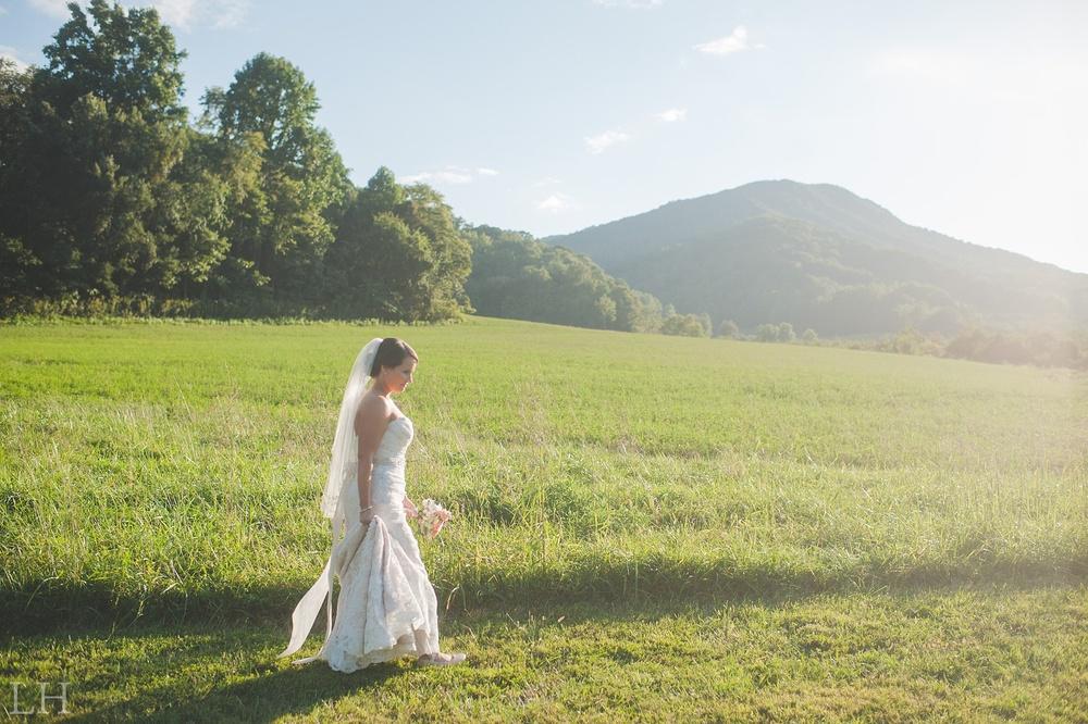 BridalsBlog120.jpg