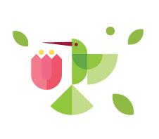 icone1.jpg