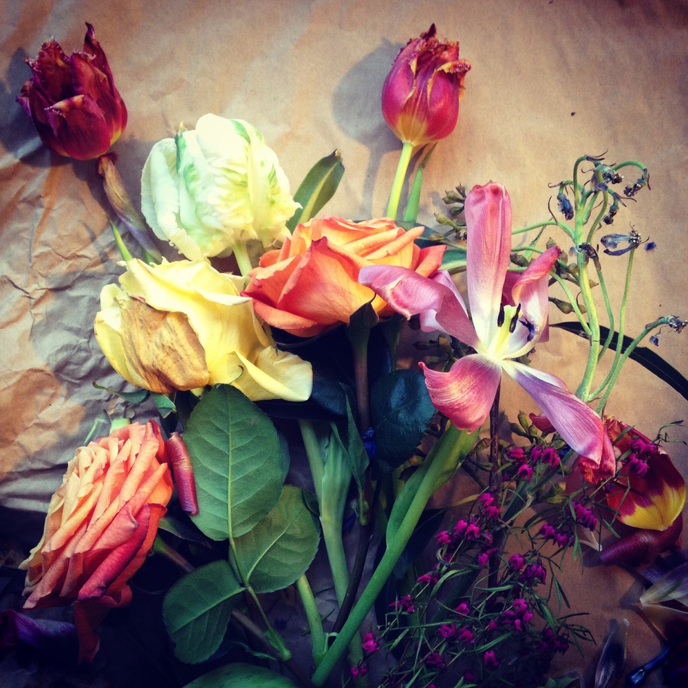 I almost love wilted flowers as much as fresh flowers.