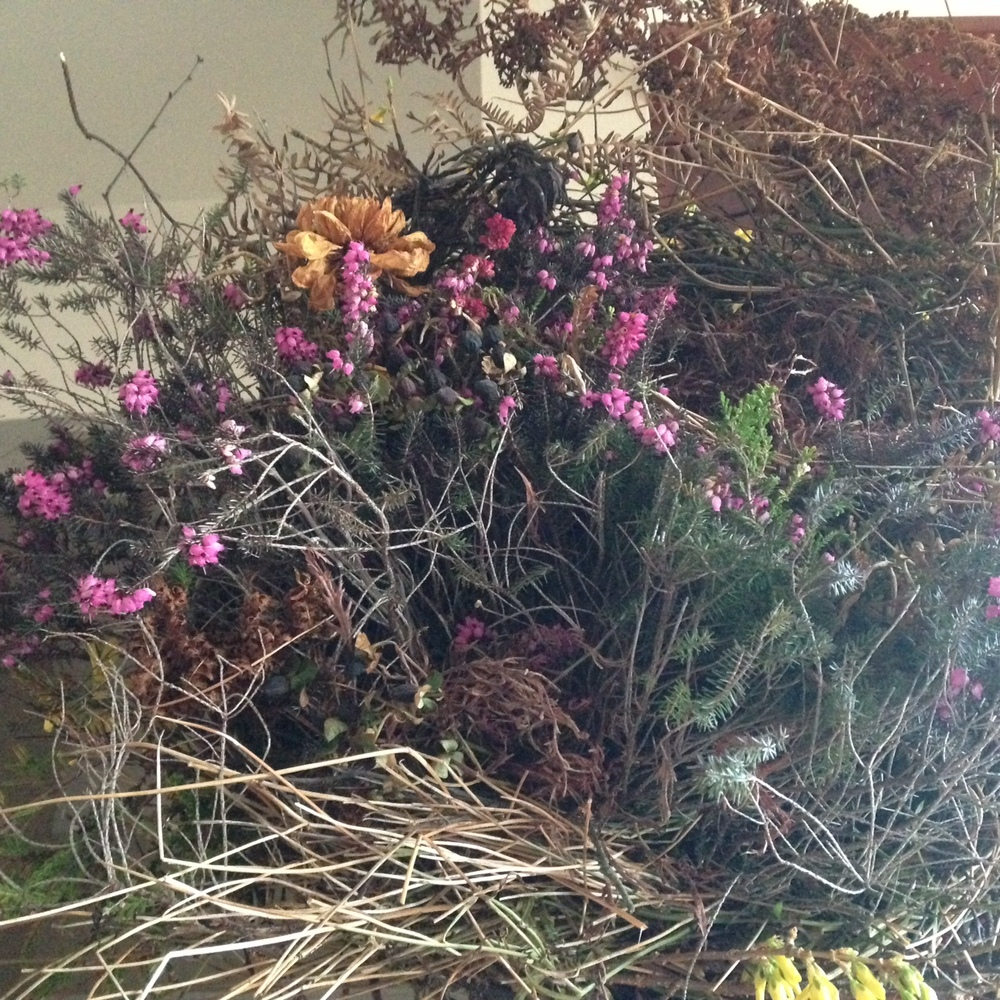 Make a beautiful wreath with clippings from your fall garden.