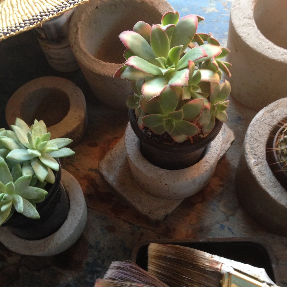 Four-Part Mix: Ideal for Succulents