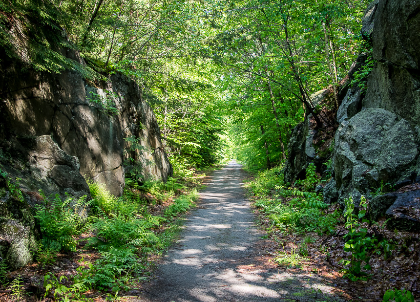 Delightful, easy hiking on the Northern Rail Trail in New Hampshire