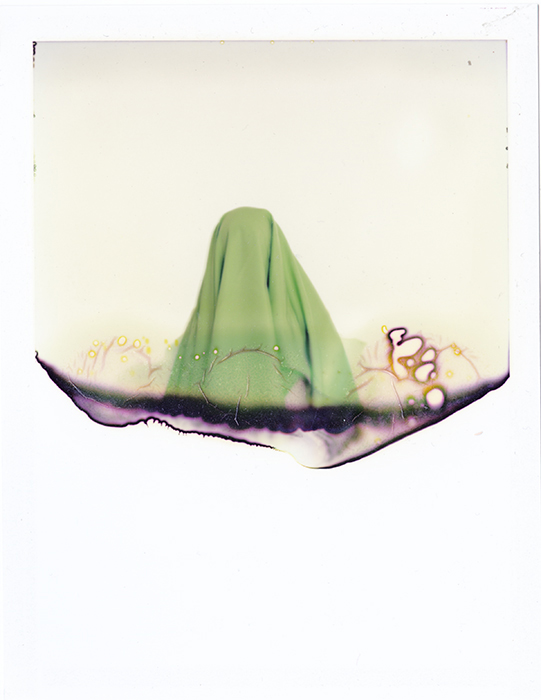 green_cloth_polaroid_2010_lo_op.jpg