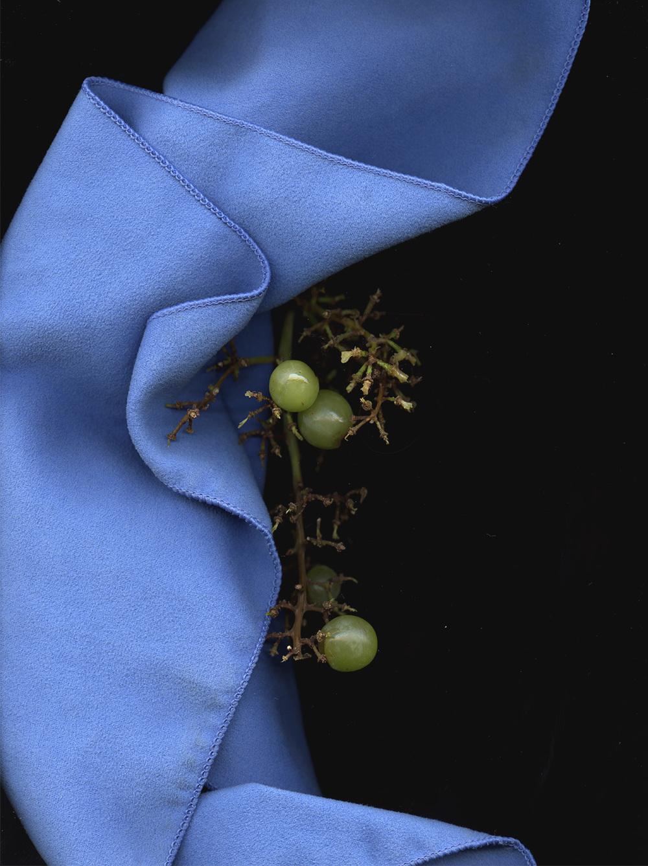 grape_cloth_lo_op.jpg