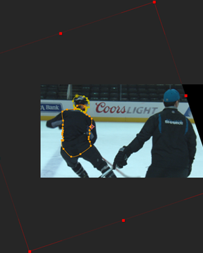 NHL Rotoscope