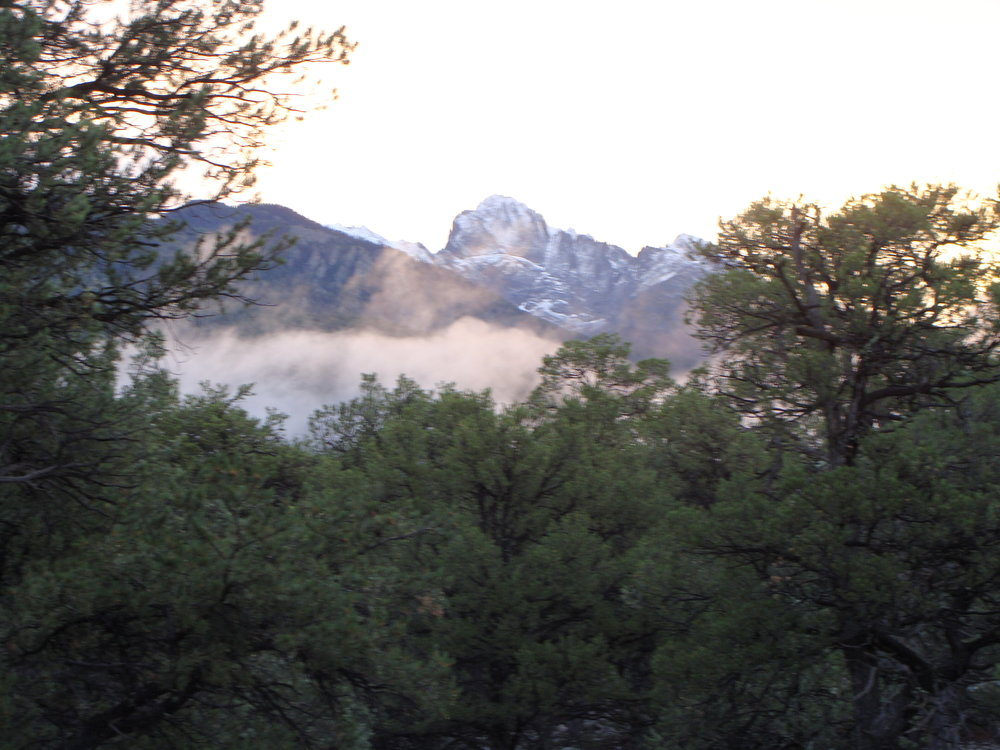 An especially beautiful sunrise over the mountains: snow, a fog bank, and sunlight in the trees