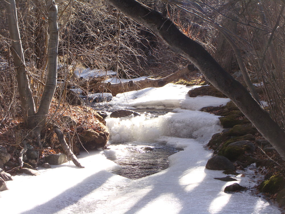 Snow and ice cover Cottonwood Creek today after a snow ...