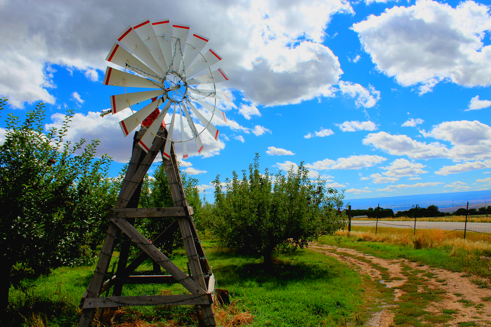A rustic windmill sits near the entrance of Red Mountain Ranches.