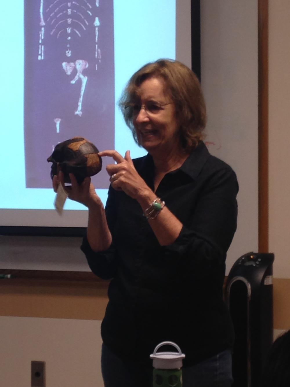 Dr. Carol Lauer