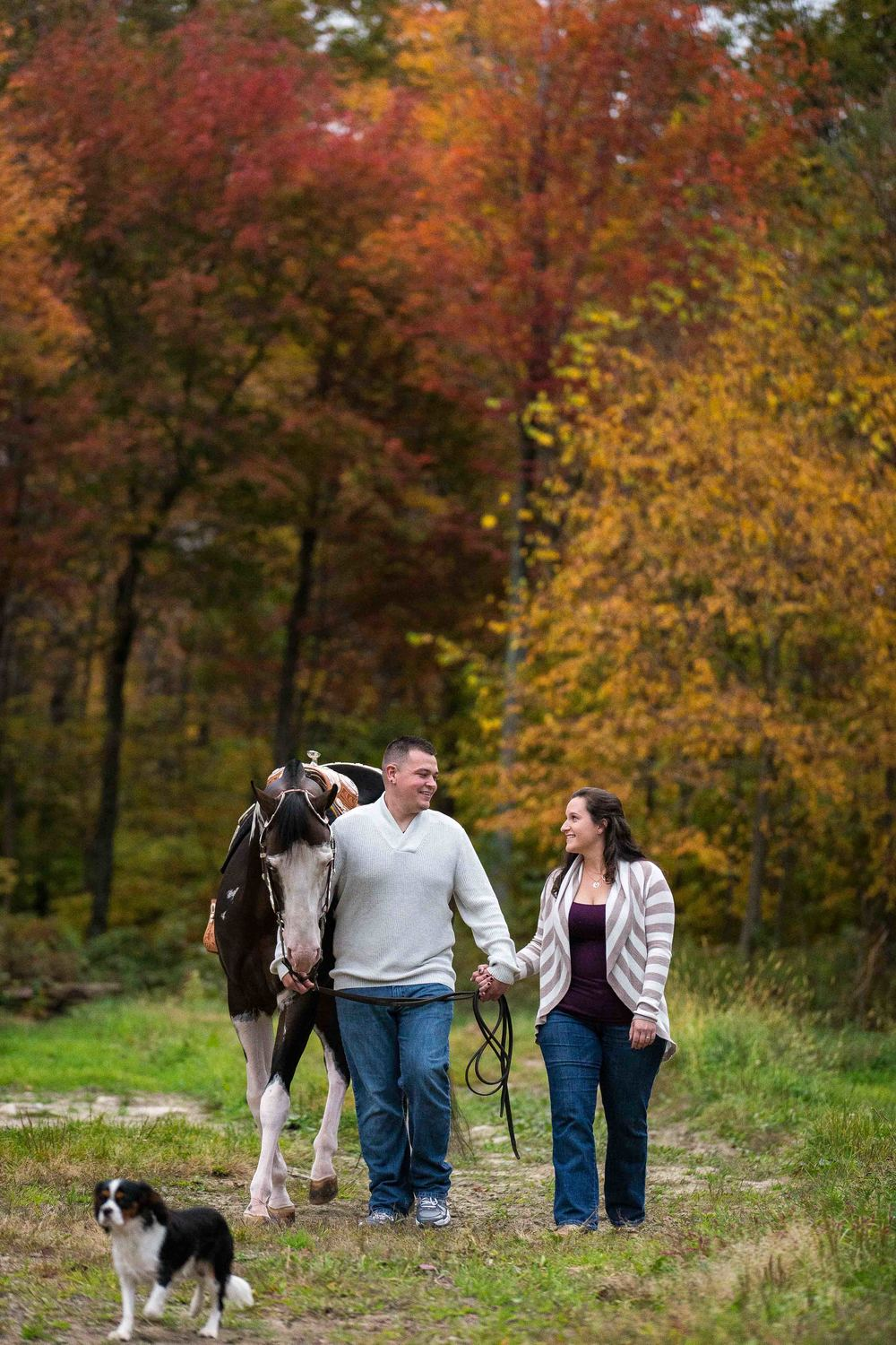 Horses-Engagement-Photography-by-Jacek-Dolata-CT-MA-RI-NJ-NYC-NY-VT-NH-PA-4.jpg