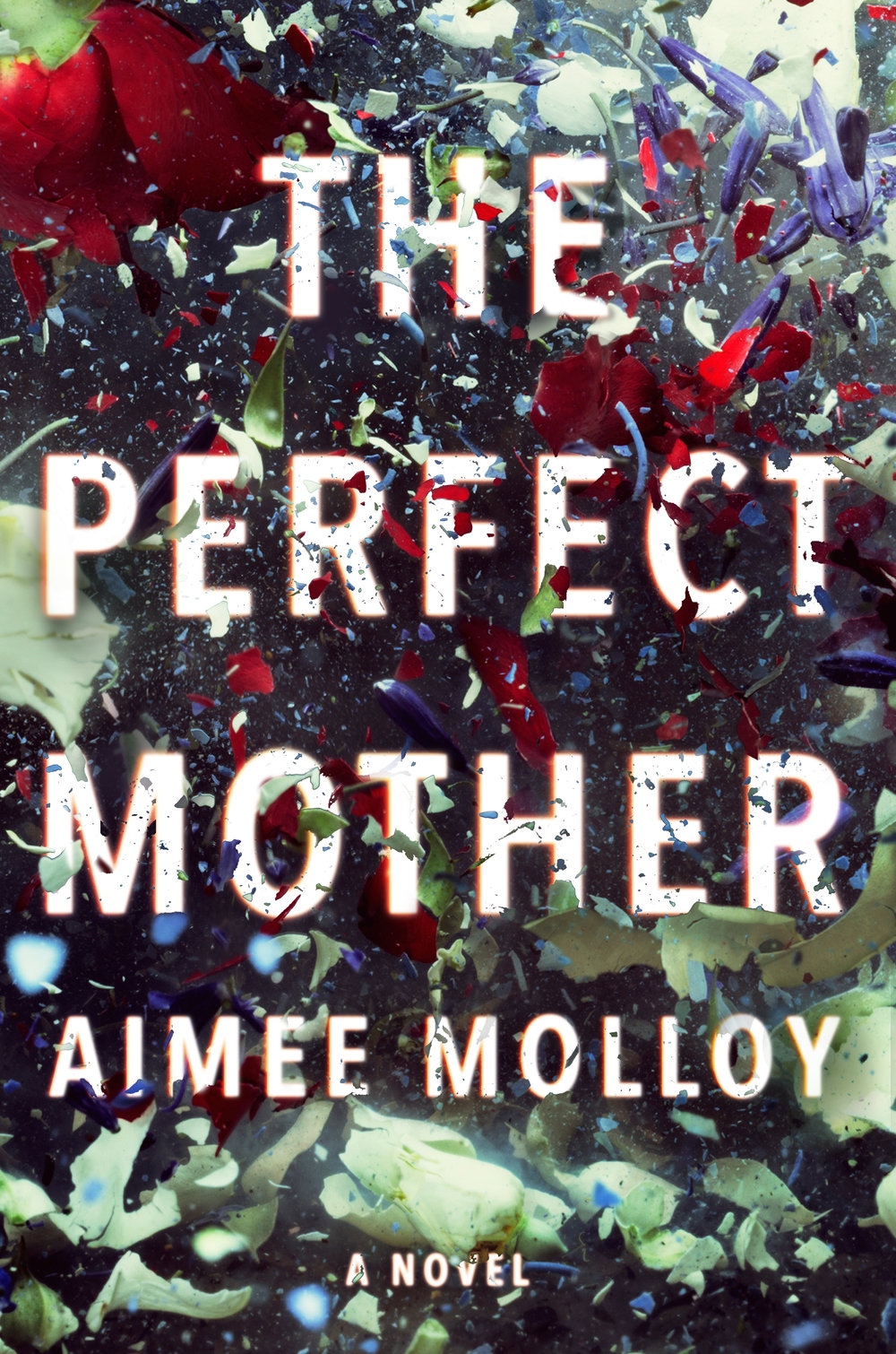 The Perfect Mother  by Aimee Molloy  Harper --- May 1, 2018