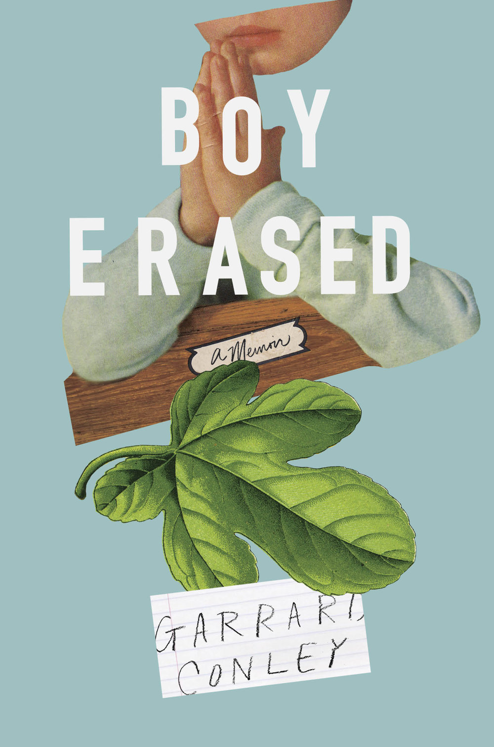 Boy Erased cover final.jpg