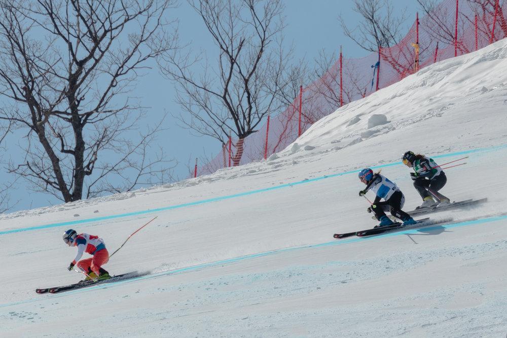 FISskicross-13.jpg
