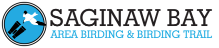 Saginaw Bay Area Birding Logo