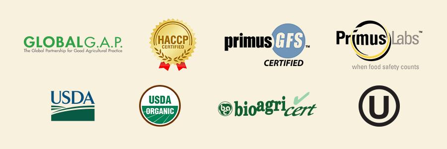 BV - Logos para página-Inglés.png