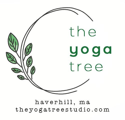 Teachers The Yoga Tree