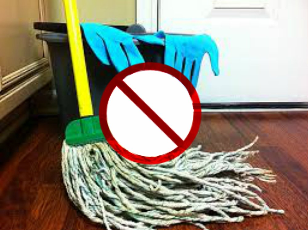 blog clean mop.jpg