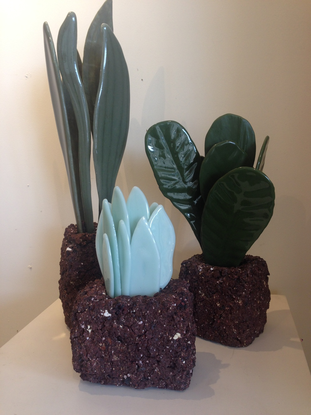 """This Very Earth"" series. Ceramic plants. By Nicole Kolig."