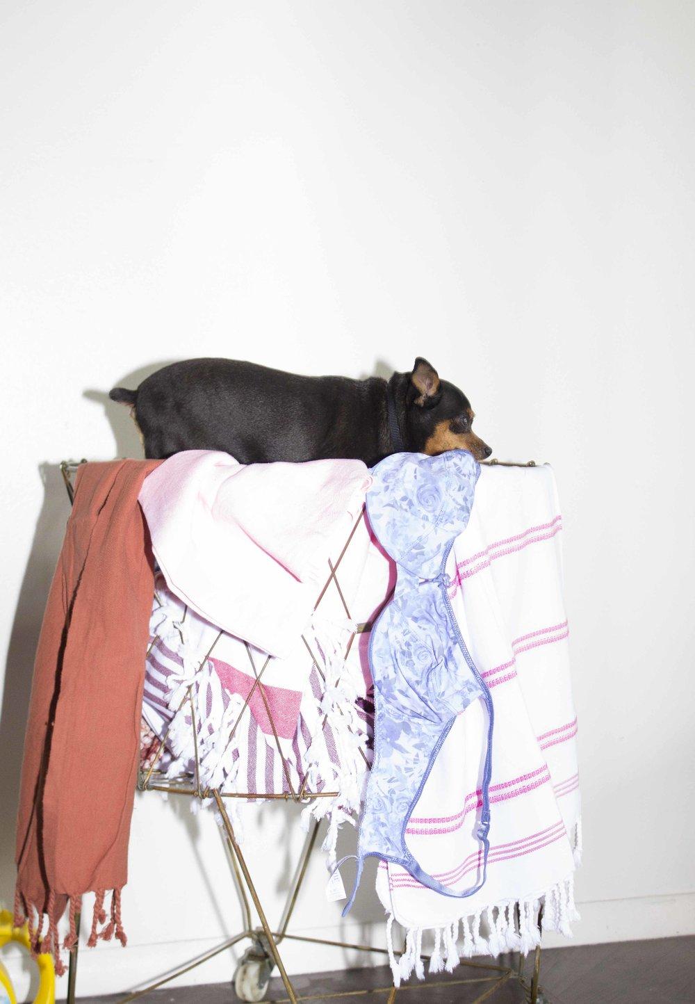 cmw - laundry_5.jpg