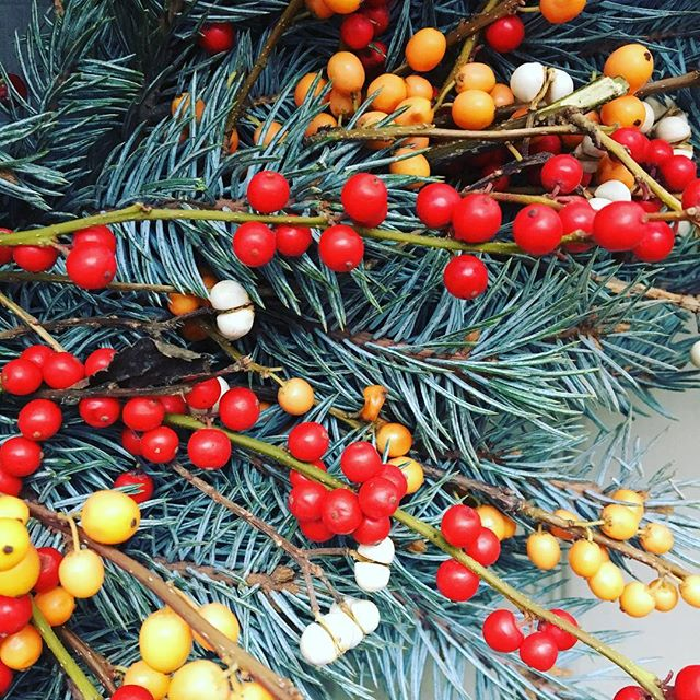 Northern lights for the holidays @portlandfarmers #mywreaths #holidays#holidaygifts