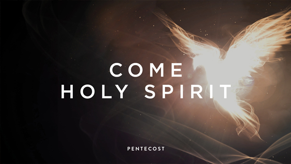 Considering the transformative power of the Holy Spirit in our lives, as described in Romans 8, and what happens when we surrender to the journey of walking in the Spirit.