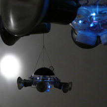 fly lights