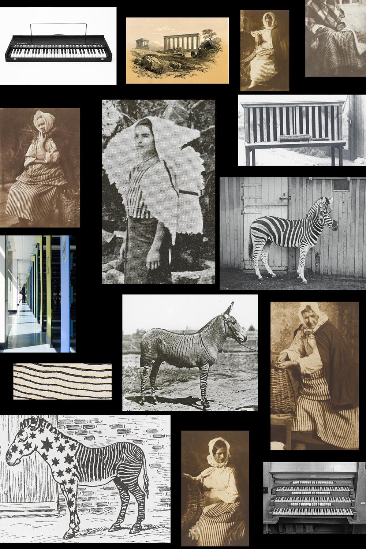 FabienneHess_Zebras2.jpg