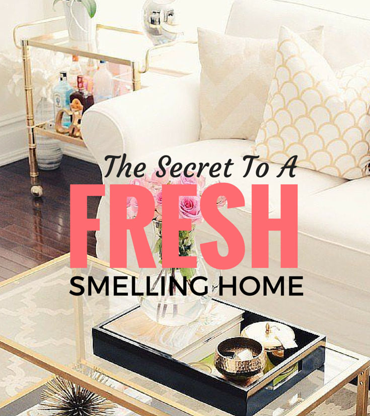 Fresh Smelling Home Pinterest.jpg