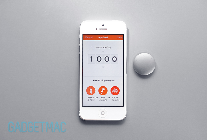 shine_fitness_tracker_ios_app.jpg