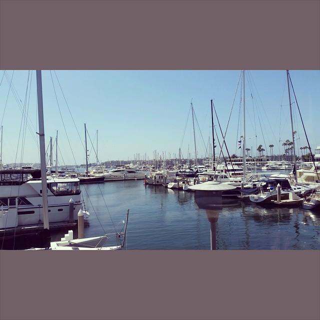 Seasick yet still docked    #modepopuli #marinadelrey #breakfast #water #Morrisseysong