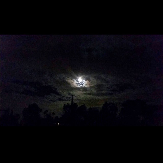 Waiting for the night to fall    #modepopuli #night #moon #moonlight #depechemode #violator #waitingforthenighttofall