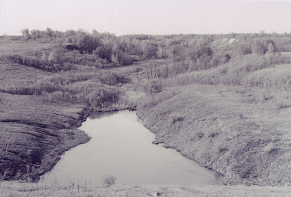 This photo was taken by Bryan in 1998 of an abandoned strip mine near Knox. His interaction with these damaged landscapes inspired him to think about how to regenerate lost ecological functions.