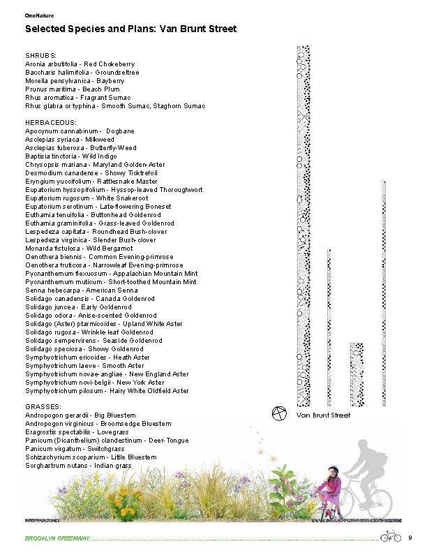 BGIDesignandMaintanancePlanFeb2014_sm_Page_12.jpg
