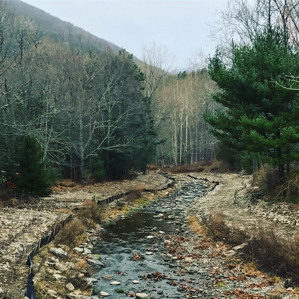 Bushkill Creek Stream Restoration