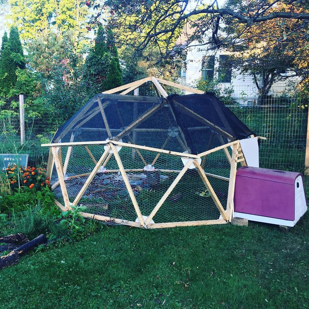 2017 - Geodesic Chicken Coop