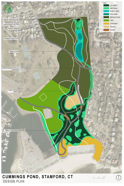 cummings pond plan render 1.30.19 Rv2.png