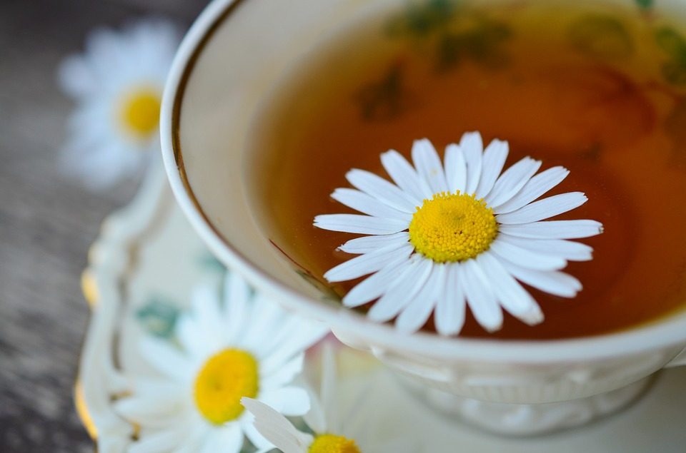 Chamomile is a flower that can be dried and steeped in hot water to make a cooling, calming tea.