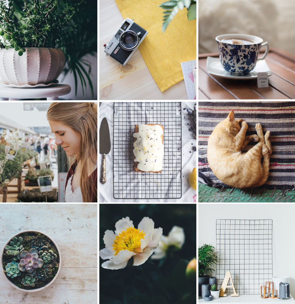 HOW TO CURATE YOUR INSTAGRAM FEED  |  Hue & Tone Creative