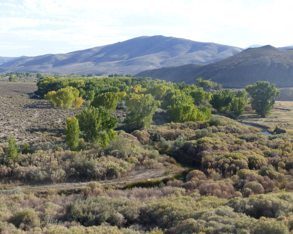 "Expand recreational interests - In what Governor Brian Sandoval called a ""generational opportunity for Nevada,"" the Walker Basin Restoration Program transfered 12,100 acres of land and 29.7 miles of East Walker River back to the State of Nevada during the summer of 2017. This land makes up the Walker River State Recreation Area; a state park for the people of Nevada."