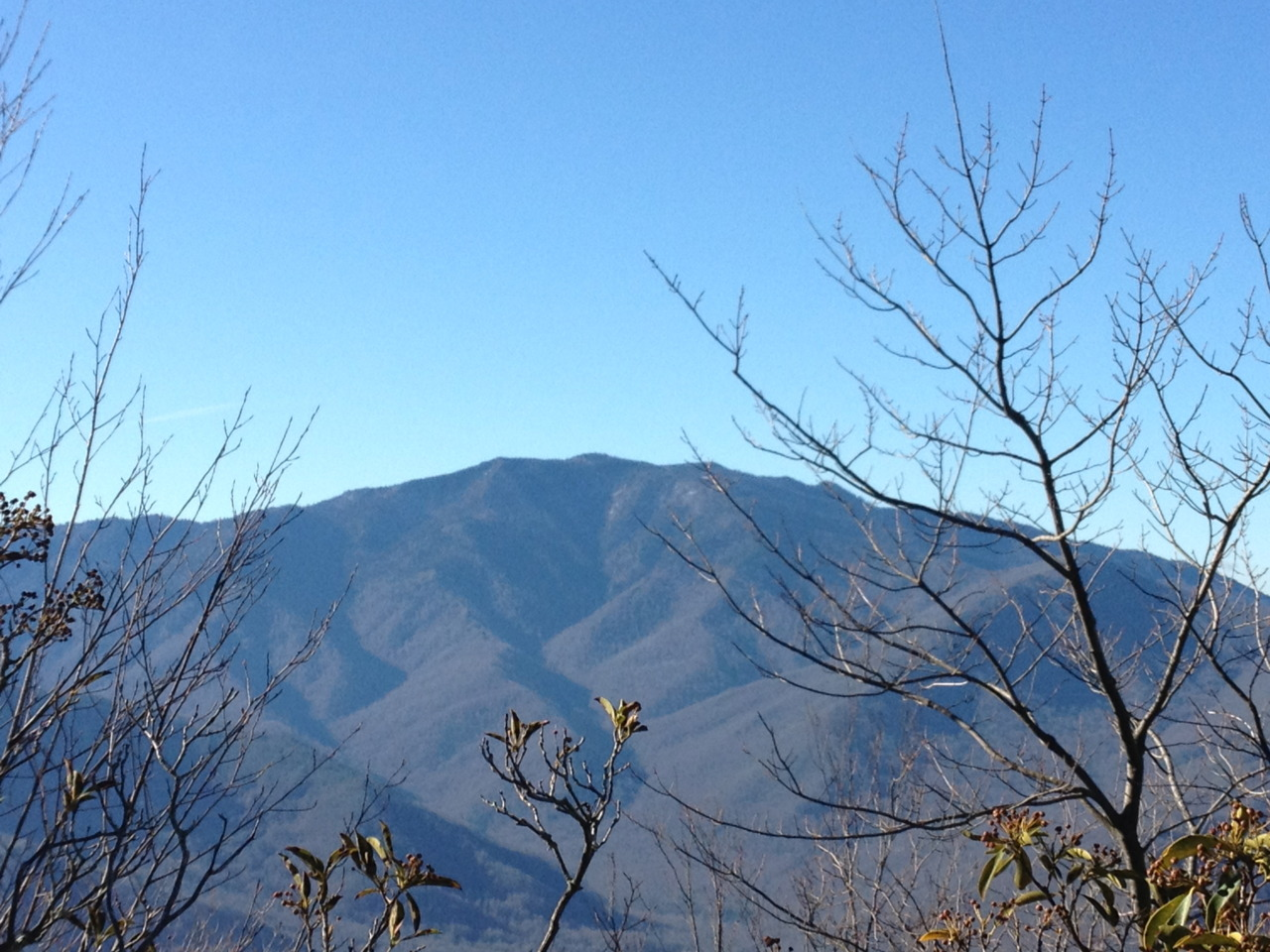 Mt. LeConte as viewed from the unmaintained Greenbrier Pinnacle Trail.