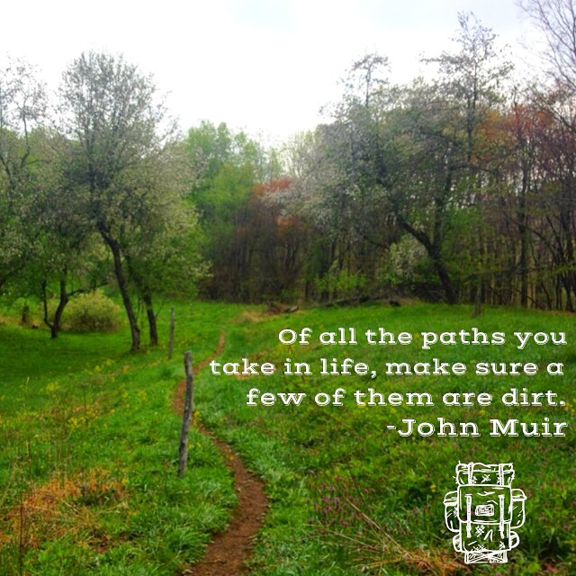 This part of the AT used to be an apple orchard. #tn #at2012 #atthruhike2012 #rainydays #appalachiantrail #johnmuir