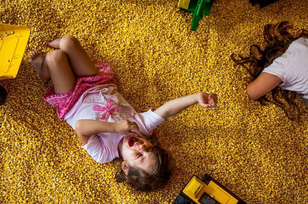 From left, Izzy Verellen, 4, of Columbiaville, plays in a box of corn with Isabella Evans, 8, of Flushing, at the Genesee County Fair on Wednesday, Aug. 24, 2016 at the E.A. Cummings Center in Mount Morris. The fair featured a youth horse show, pie eating contest, a truck and tractor pull,  carnival rides and other activities for people of all ages to enjoy.