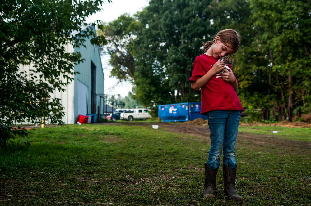 Reagan Persails, 7, of Otter Lake, holds a puppy while at the Genesee County Fair on Wednesday, Aug. 24, 2016 at the E.A. Cummings Center in Mount Morris.