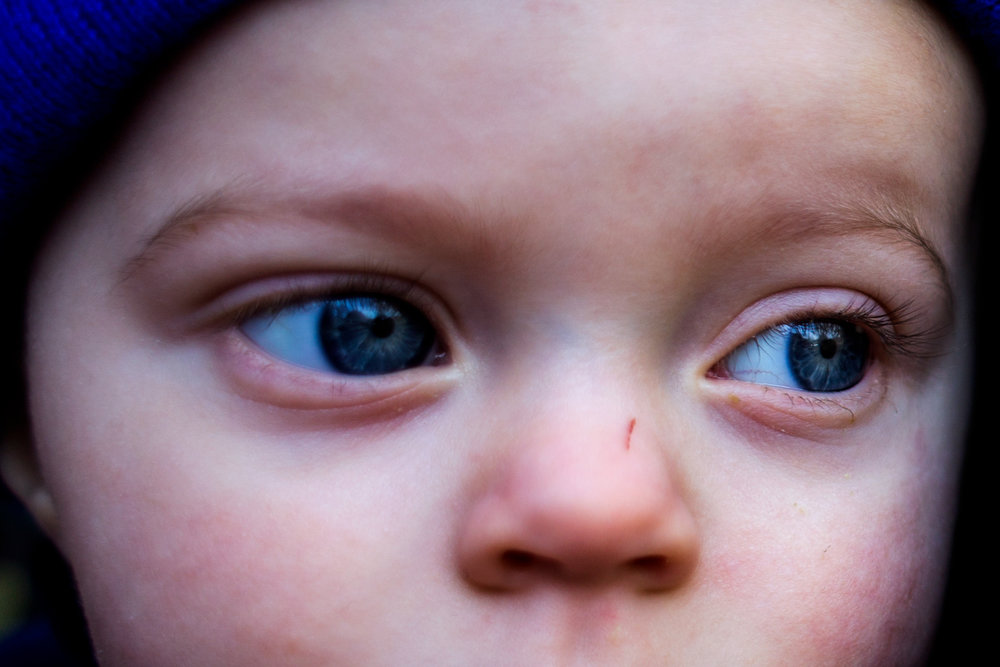 Stuart Welp of Ferdinand, 1, watched as people gathered under the shelters after completing a 2.5-mile hike during the Cabin Fever Hike at Ferdinand State Forest in Ferdinand.